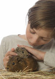 Little girl and her pet a guinea pigs. White background Royalty Free Stock Image