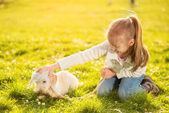 Little girl with her puppy dog Royalty Free Stock Photography