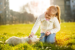 Little girl with her puppy dog Stock Photo