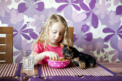 Child with puppy Royalty Free Stock Image