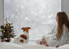 Little girl and her puppy jack russell sitting by the window royalty free stock photos