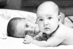 Little girl and her toddler brother. Are lying on a bed. Black  and white photo Royalty Free Stock Images