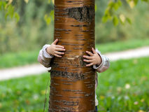 Little girl hide over the tree Royalty Free Stock Image