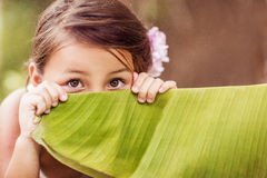 Little girl hiding Stock Photography