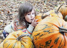 Little Girl Hiding Behind Pumpkins Royalty Free Stock Image