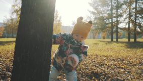 Little girl hiding behind a tree in the autumn forest.  stock footage