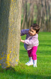 Little girl hiding behind a tree in a forest Royalty Free Stock Image