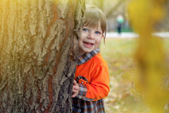 Little girl  is hiding behind a tree. Little girl in orang checkered dress  is playing hide and seek in the park Stock Images