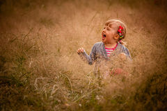 Little girl in the high grass Royalty Free Stock Photo