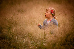 Little girl in the high grass Royalty Free Stock Photos