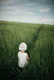 Little girl in high grass Stock Photography