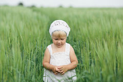 Little girl in high grass Royalty Free Stock Photography