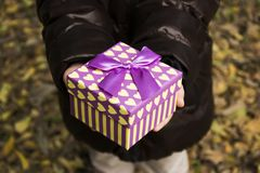 Little girl hodling a gift box Stock Photography