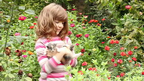Little girl hold two kittens stock footage
