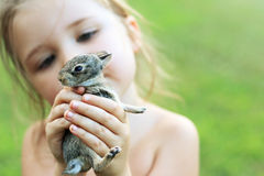 Little girl holding baby bunny. Selective focus Royalty Free Stock Photos
