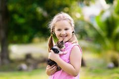 Little girl holding baby cat. Kids and pets stock photo