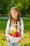 Little girl holding a basket of apples Stock Images