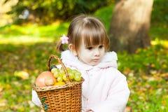 Little girl holding a basket full of fruit. Cute little girl holding a basket full of fruit Stock Image