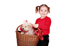 Little girl holding basket with puppy Stock Photos