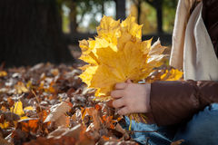 Little girl holding a bunch of leaves Royalty Free Stock Photography