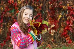 Little girl holding colorful autumn leaves Stock Images