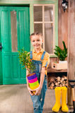 Little girl holding colorful flower pots with home plant and smiling at camera Royalty Free Stock Photos