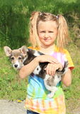 Little girl holding a dog stock photography
