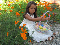 Little Girl Holding An Easter Basket Full Of Easte. Three year old little girl holding a Easter basket full of Easter eggs sitting amongst orange California Royalty Free Stock Photography