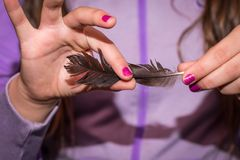 A little girl holding a Feather. A closeup of a girl rubbing her fingers over a feather Stock Image