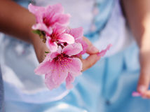 Little Girl Holding Flower Stock Photography