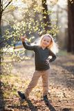 Little girl is holding a flowering twig in the spring. Little blond girl is holding a flowering twig in the spring stock photography