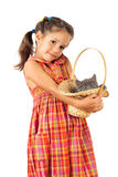 Little girl holding a gray kitten in basket Royalty Free Stock Images