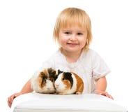 Little girl holding a guinea pig Stock Photos