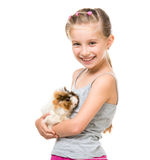 Little girl holding a guinea pig Royalty Free Stock Photos