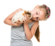 Little girl holding a guinea pig Stock Photography