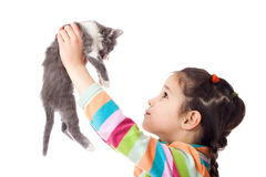 Little girl holding in hands adorable kitten Royalty Free Stock Image