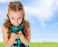 Little girl holding in hands a small turtle. Royalty Free Stock Photos