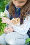 Little girl holding kitty and a bouquet of chamomiles on her hands stock images