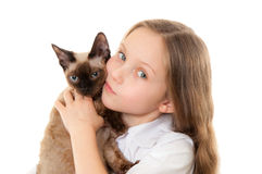 Little girl holding kitten Royalty Free Stock Images