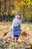 Little girl holding leaves standing in yellow forest Stock Photos