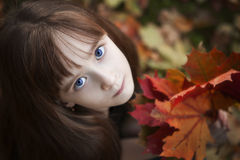 Little Girl Holding Maple Leaves Royalty Free Stock Photography