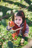 Little girl holding organic apple in her hand Royalty Free Stock Image
