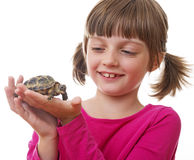 little girl holding a pet turtle Stock Images