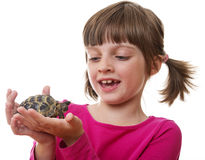 Little girl holding a pet turtle Royalty Free Stock Photos