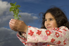 Little girl holding plant Royalty Free Stock Photos
