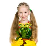 Little girl holding a plant Stock Images