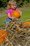 Little Girl Holding Pumpkin. In pumpkin patch Stock Images