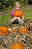 Little Girl Holding Pumpkin. In pumpkin patch Royalty Free Stock Photo
