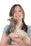 Little Girl Holding Puppy 2. Little girl with pig tails in her hair and a big smile holding a Shih Tzu puppy dog.  Puppy is licking her on the face.  Shot on Stock Image