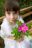 Little girl holding rose flower Stock Image